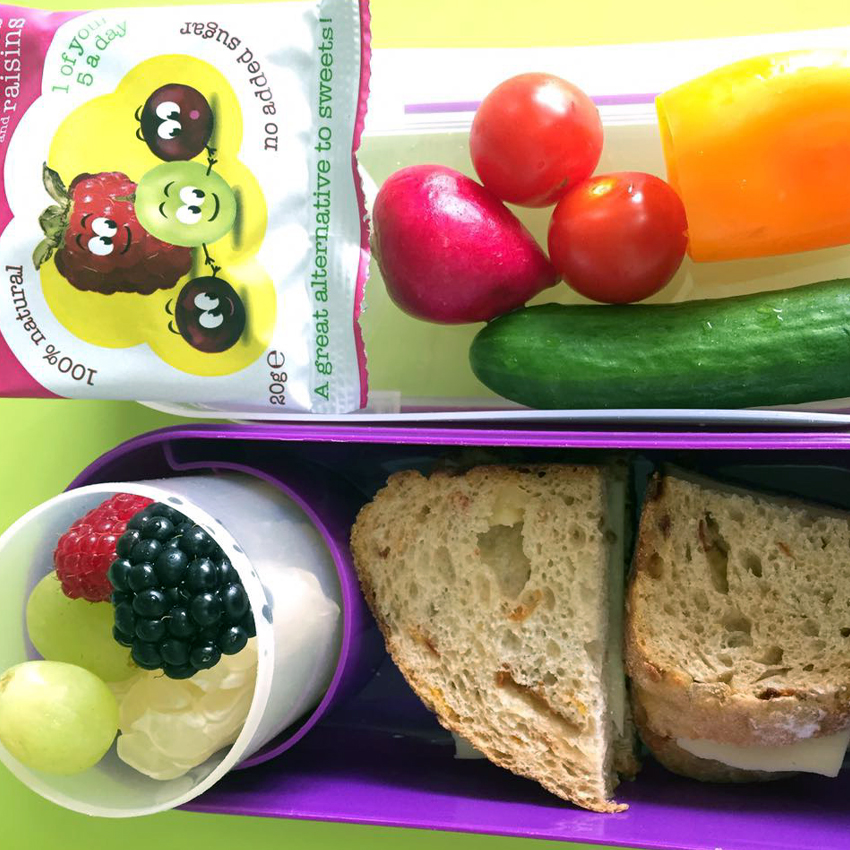 Coloring your Lunchbox